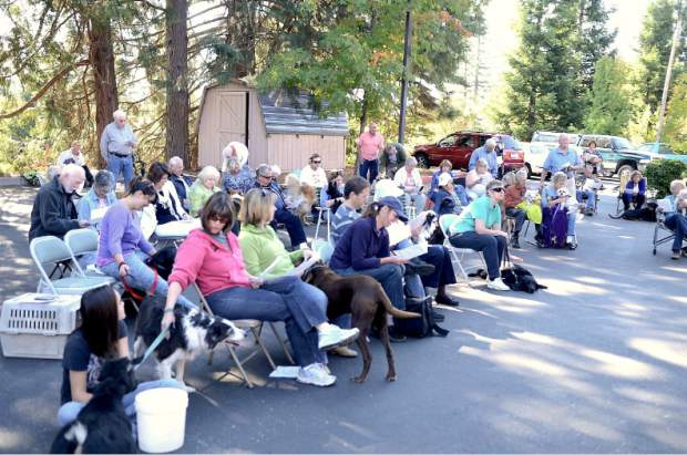 Blessing of the Animals took place Saturday morning at Peace Lutheran in Grass Valley, in the spirit of St. Francis of Assisi. People wait in the church parking lot where the blessing took place.