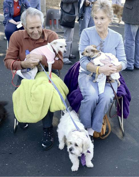 Frank and Joyce Chilberto wait for the Blessing of the Animals to begin with dogs Pretious, Gig and Reggie, on the ground,.