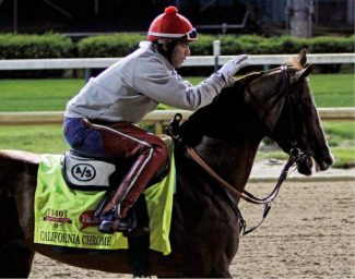 Exercise rider William Delgado takes Kentucky Derby entrant California Chrome for a morning workout at Churchill Downs Friday, May 2, 2014, in Louisville, Ky. (AP Photo/Garry Jones)