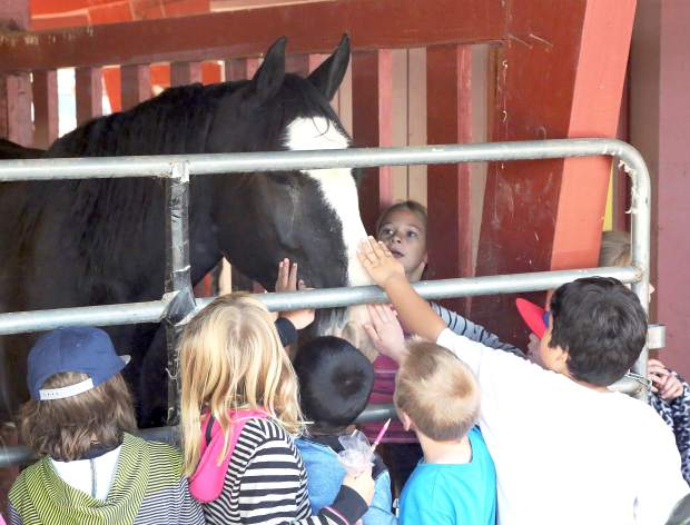 Kids pet a draft horse during a previous Farm Day organized by the Nevada County Resource Conservation District. This year's Farm Day, the fifth annual, takes place the day before the Draft Horse Classic at the Nevada County Fairgrounds.