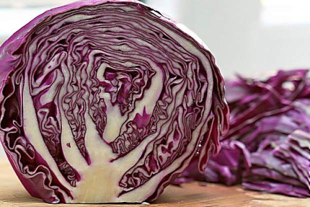 Amanda Thibodeau Red Cabbage Is Harvest Of The Month