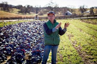 Amanda Thibodeau: Red cabbage is 'Harvest of the Month'