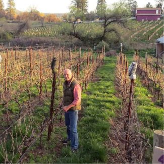 Rod Byers: The vine's the thing