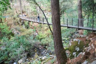 Food, drinks, fun fest at 'Celebration of Trails 2016' June 4 in Nevada County