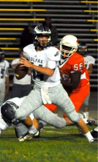 Colfax quarterback Michael Wilson threw for 346 yards and seven touchdowns as the Falcons beat Mesa Verde 48-19 Oct. 4.