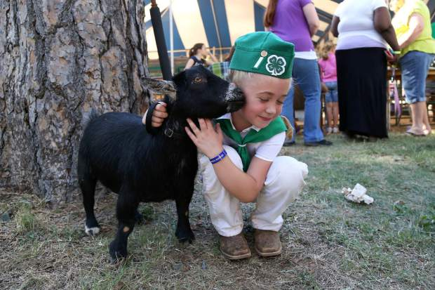 Taylor Browning with her pygmy goat, Ladybug, after competing in the Pygmy Goat Obstacle Course at the Nevada County Fair on Thursday.