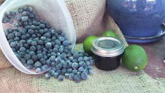 Ball Blue Canning Book's recipe for Blueberry Lime jam.