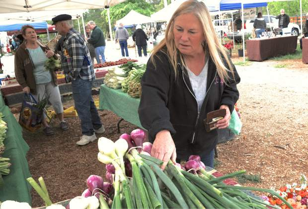 The first Nevada County Certified Growers Market was held Saturday morning at the North Star House, Auburn Road in Grass Valley. Other farmers' markets will also open soon, starting May 5 at the Rood Center, and May 7 in Penn Valley. Photo shows Sue Beck checking out  vegetables at the Certified Growers Market Saturday..