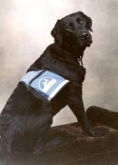 Beaudry, the service dog at Golden Empire Convalescent Hospital, has passed away.
