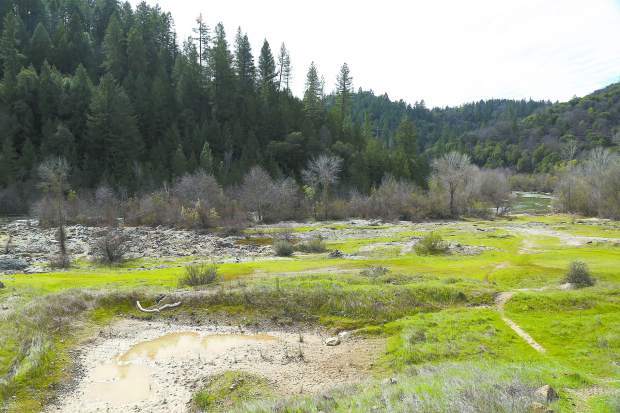 Site for the Centennial Reservoir project off Dog Bar Road in Grass Valley.