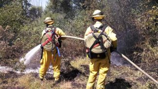 North San Juan Fire District engines 6160, 6182 and water tender 6191, together with Cal Fire engines 2378 and 2388, responded and quickly contained a half-acre fire in French Corral Monday. Cause of the fire was a lizard in an electrical pump switch, according to a news release.