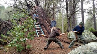 Fox Walkers: Nevada County youth have more opportunities this spring to learn Earth skills
