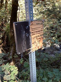 The plaque near the Tribute Trail leading out of Nevada City, as part of a series of art installations by the ART OnSite project, was found Friday to have been destroyed.