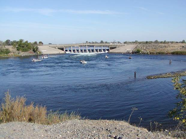 Tips for Salmon fishing on the Feather River | TheUnion com