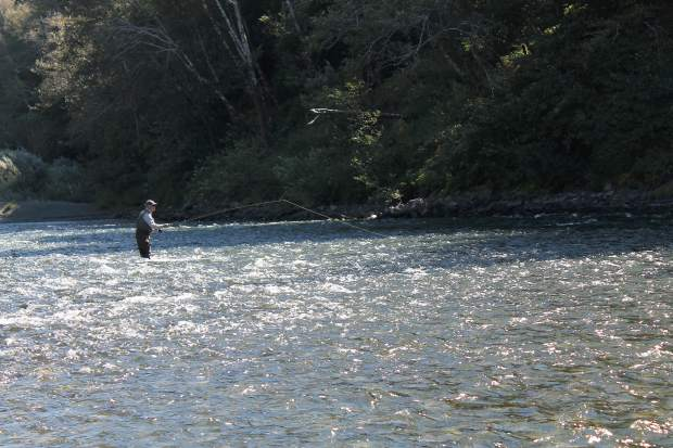 Fly fishing on the lower rogue river for Rogue river fishing