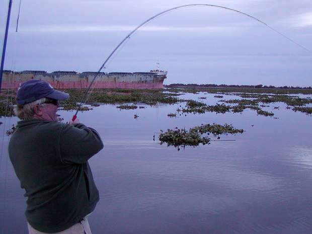 Down on the delta fishing these winding waterways unfolds for San joaquin river fishing