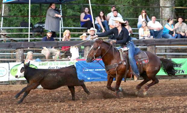 Calf roping competition at the Penn Valley Rodeo Friday evening.