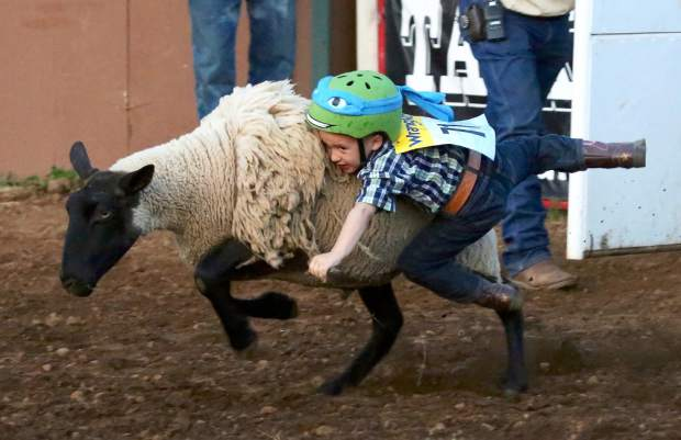 Kids compete in mutton busting at the Penn Valley Rodeo Friday evening.