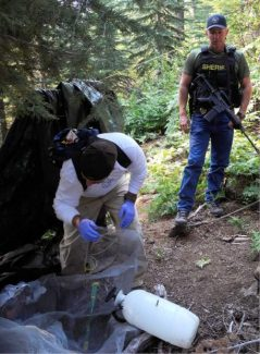 Nevada County Environmental Health Specialist Dave Slaughter examines garbage and potential sources of chemicals while evaluating the site of an illegal cartel grow for clean-up in August 2013 as Nevada County Sheriff's Sgt. Guy Selleck, the head of the Narcotics Task Force, looks on.