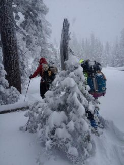 A back-country skier who had become lost with his dog was rescued Saturday morning by members of the Nevada County Sheriff's Search & Rescue team.
