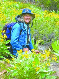 Open to the generosity of nature: Julie Carville releases her new Tahoe wildflower book