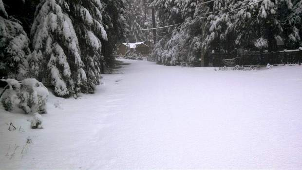 A road obliterated by snow in Cascade Shores Tuesday morning, where nearly 6 inches were reported.