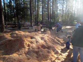 At Condon Park's Dogs Run Free, volunteers spread mountains of cedar shavings Sunday, with the help of several furry friends. Sixty-four cubic yards of cedar shavings were donated by Sierra Crest Mill and delivered to the dog park, courtesy of Grass Valley Transfer. For more information on Dogs Run Free of Nevada County, email dogsrunfreeGV@aol.com or visit DogsRunFree.net.
