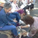 Shih tzu-mix Chewie, center, receives a blessing from the Rev. Charlane Line, right, while Elizabeth Ekblad looks on during a 'Blessing of the Animals,' held in 2015 at Peace Lutheran Church in Grass Valley. Dogs, rats, horses, cats and all creatures great and small are welcome to this year's free event, which marks the feast day of St. Francis of Assisi, the Italian mystic who believed all of nature mirrors the Divine.