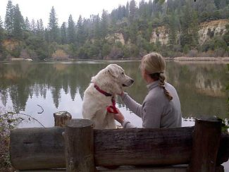 Bear Yuba Land Trust board member Letty Litchfield enjoys Hirschman's Pond Trail with her dog, Boo. Located off Cement Hill Road in Nevada City, the trail officially opened two years ago and was named after local miners and merchants, the Hirschman Brothers.