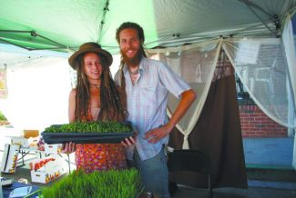 Biodynamic farmers find superfood niche with mighty microgreens