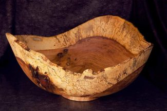 New art show opens on Earth Day in Nevada City
