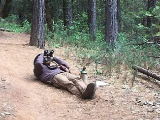Spaces still available in new naturalist program that starts Tuesday in Nevada County