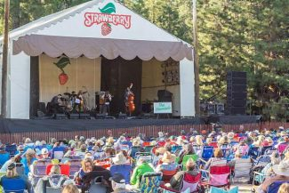 "Take ""The Strawberry Way"" to great music this weekend"