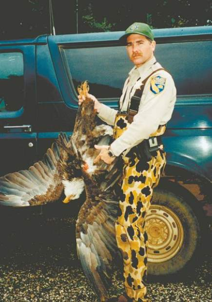 California Fish and Game warden Jerry Karnow holds a bald eagle that was poached in this 2008? photo.