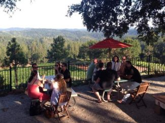 "Enjoy the view at the Lucchesi ""View Forever Vineyard"" on the wine trail Sept. 24 from 11 a.m.-5 p.m."