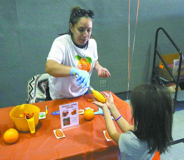 Sierra Harvest food educator Brianna Abundiz passes out Cara Cara and Blood Oranges from Sunset Ridge Fine Fruits in Newcastle to Margaret G. Scotten Elementary School students for a Citrus Tasting Thursday afternoon.