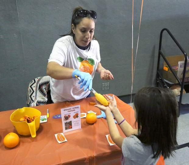 Sierra Harvest food educator Brianna Abundiz passes out Cara Cara and Blood Oranges from Sunset Ridge Fine Fruits in Newcastle to Scotten Elementary School students for a citrus tasting Thursday afternoon.