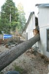 A tree fell into the dining room of this Penstock Drive home in Grass Valley Wednesday. More stormy weather is on the way, with as much as 15-20 inches of rain predicted to fall within the next week.