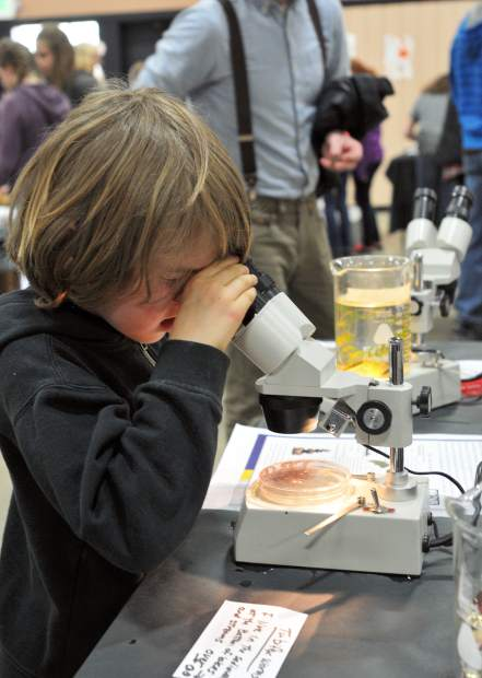 Six year old Miles Kautz looks through a microscope at tubifex worms at Nevada Union's Green Academy table.