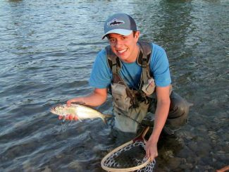 Denis Peirce: Sierra rivers running too high for trout; shad in the valley is great option