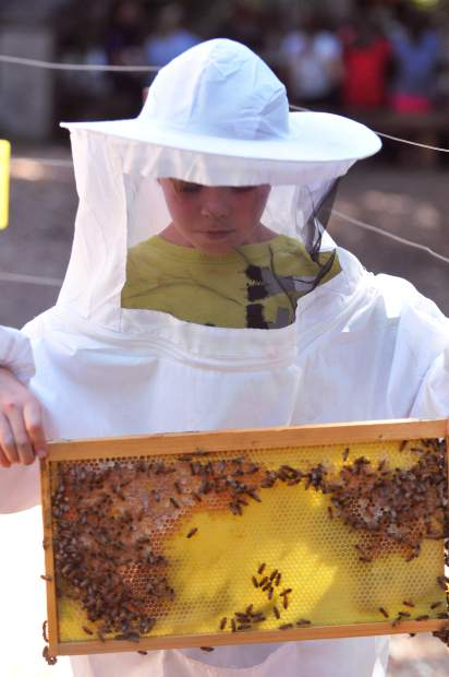 Julian Finch of Mountain View, California holds some honey bees in his hands during one of the many activities provided to the youngsters at Camp Augusta in Nevada City.