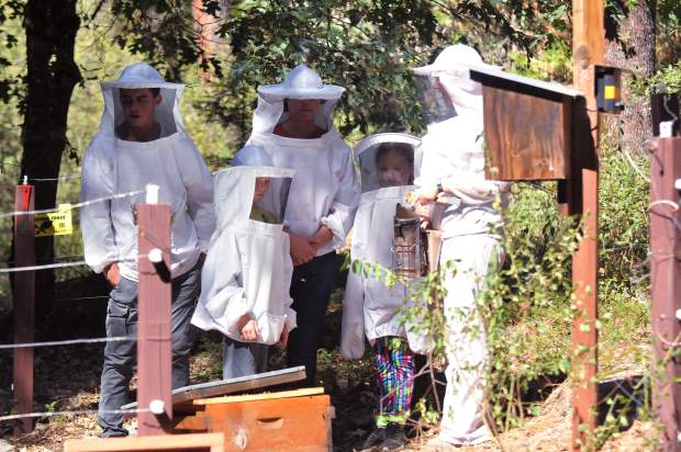 Camp Augusta assistant director Debbie Quigley assists a group of campers with a beekeeping activity.