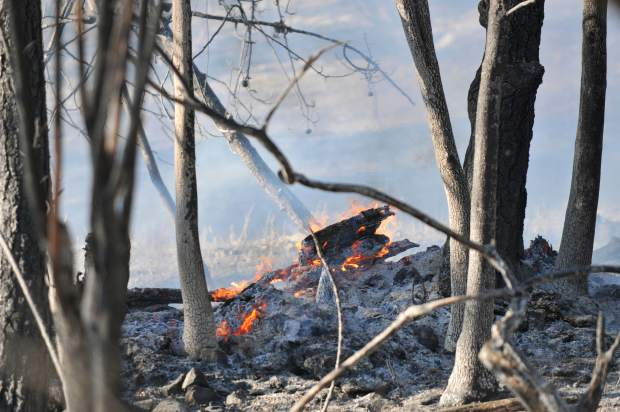 Flames from the Grizzly Fire burned nearly 10 acres of thick vegetation Friday even off of Grizzly Hill Road east of North Columbia.