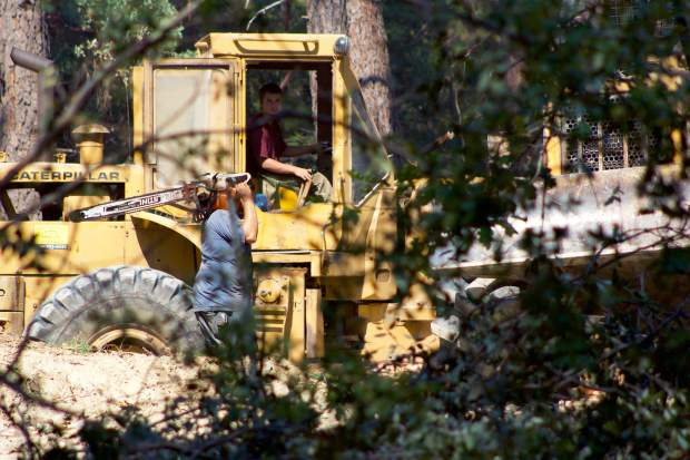 Loggers remove trees that have been killed by bark beetles and drought conditions next to Hirschman's Pond, part of Nevada City's effort to reduce the fire and public safety risks associated with its numerous dead trees.