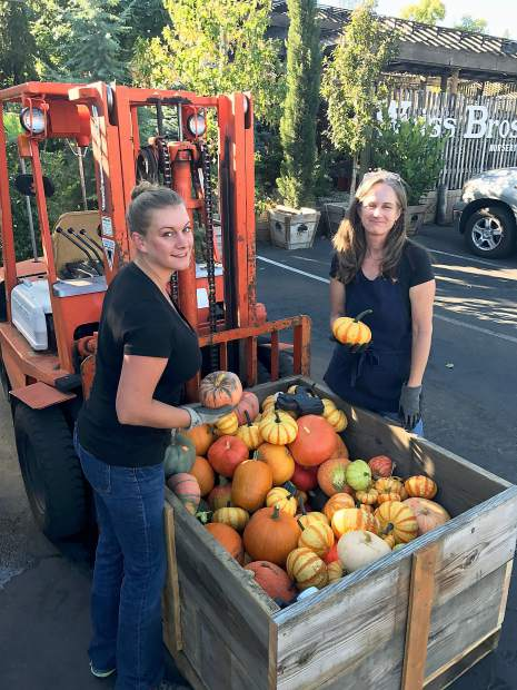 Weiss Brother's Nursery employees Bre Kleinkopf and Lise Gaffney unloading heirloom pumpkins at the Maltman Drive location.