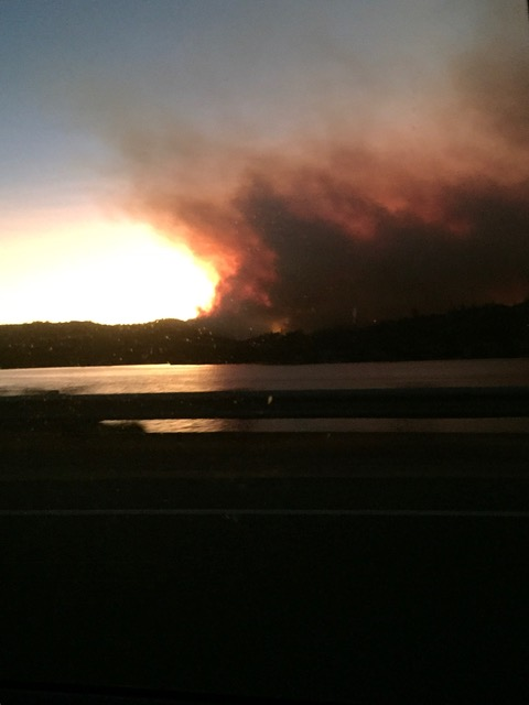 Shot of the Lobo Fire this morning.