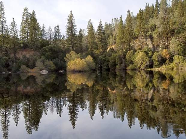 A shot of Hirschman's Pond in Nevada City.