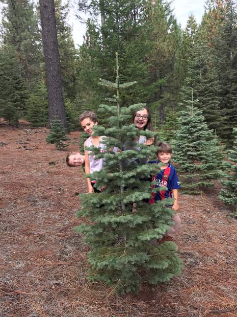 Left to right: Porter Wingo, Tate and Ellery Beaudette, and Hyatt Wingo searching for a Christmas tree in Alta Saturday.