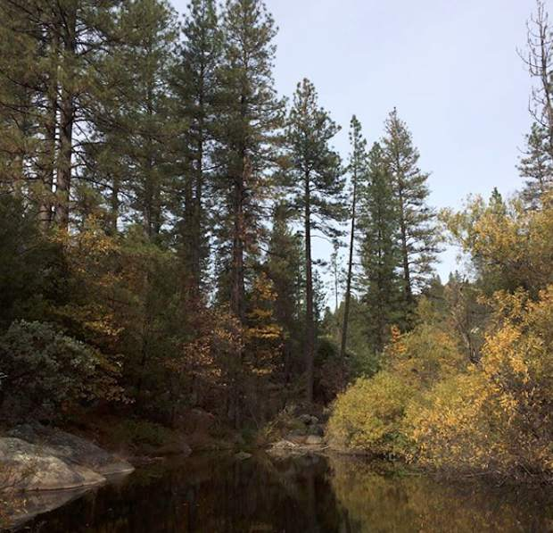 Hirschmans pond shows off its fall colors over the holiday weekend.