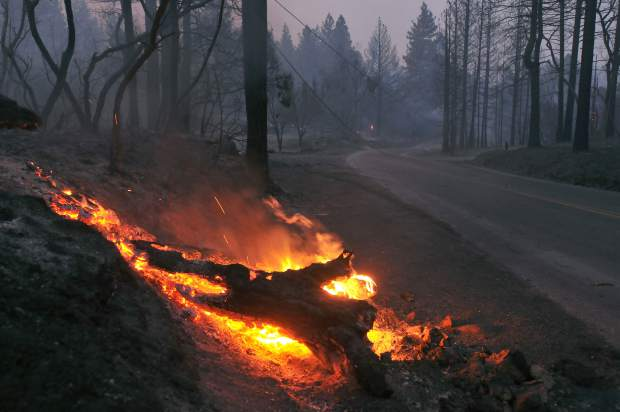 Tree limbs burn on the forest floor after the Ponderosa Fire went through the area of Lumpkin Road east of Oroville Tuesday afternoon.